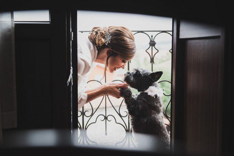 Reportajes de boda. Fotógrafo de bodas en Santander.